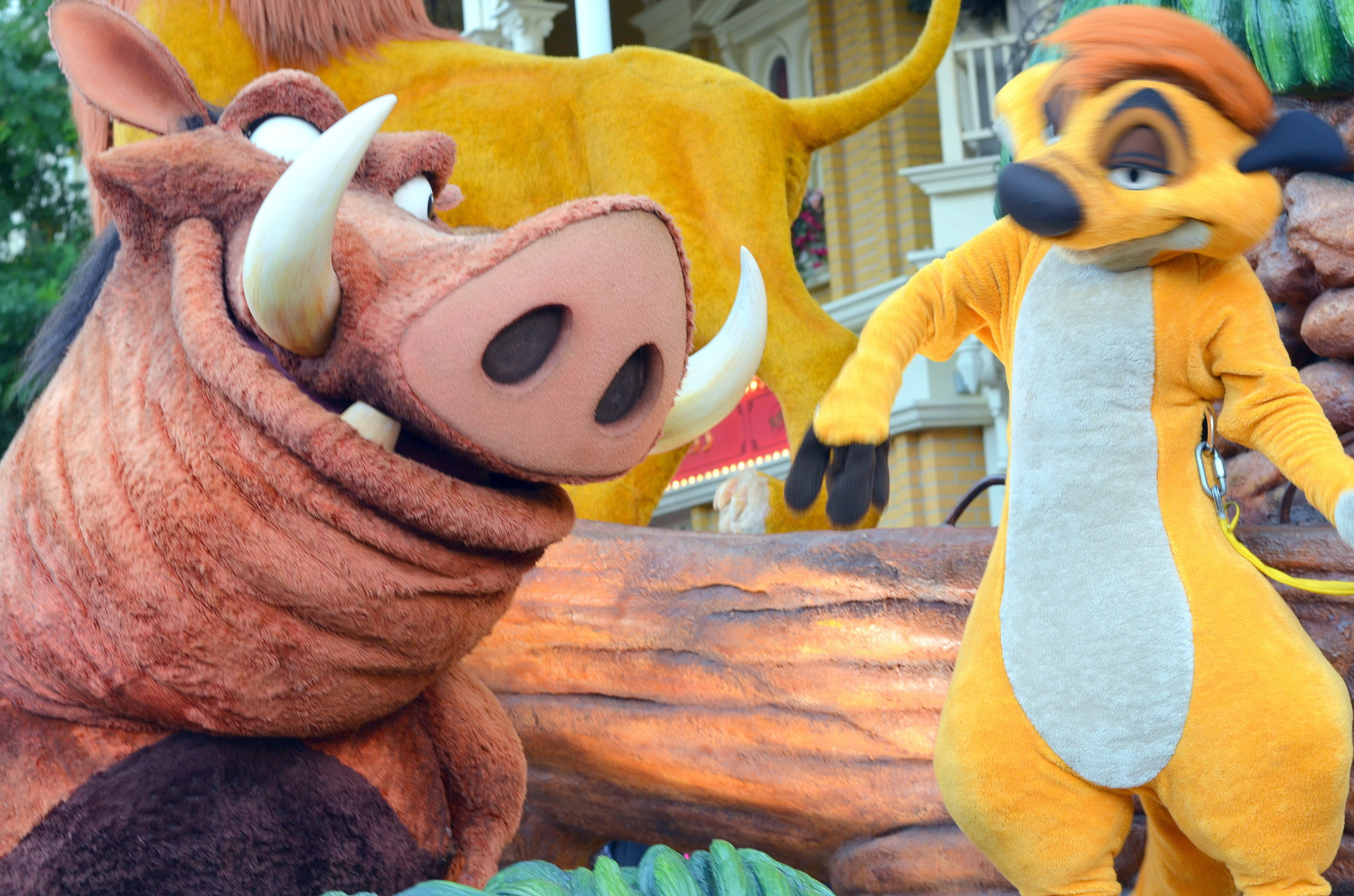 Timon and Pumba